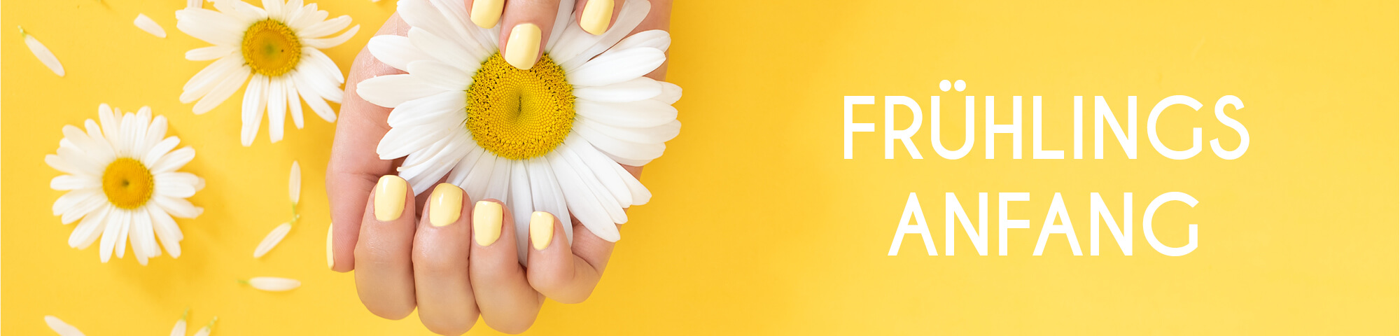 Frühlings-Produkte